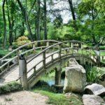 Śliczny oraz miły dla oczu ogród to zasługa wielu godzin spędzonych  w jego zaciszu w trakcie pielegnacji.